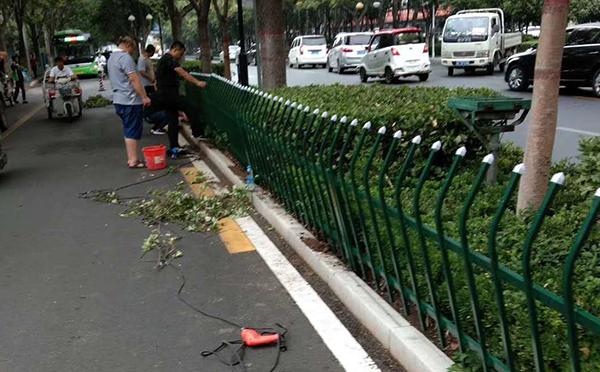 锌钢围墙护栏案例